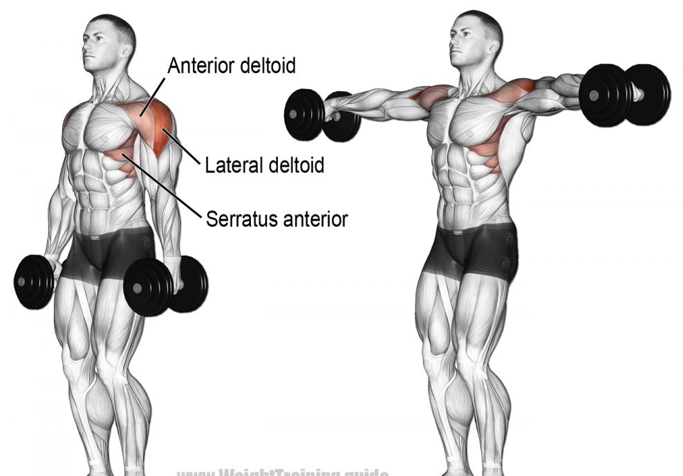 lateral raises shoulder workout